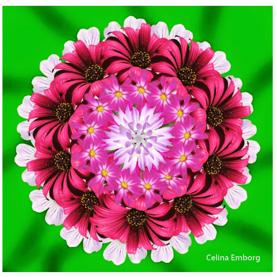 Mandalas de flores para imprimir – Celina Emborg