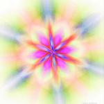 Mandala Semilla de la Vida