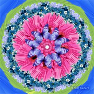 imagen-de-mandala-de-flores