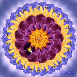 imagen-de-mandala-floral