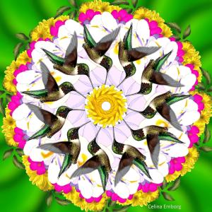mandala-primavera