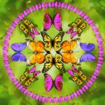 Mandalas con mariposas. ¿cuál es su significado?