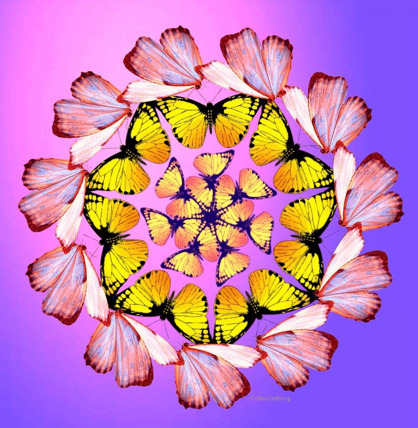 Mandalas con mariposas cu l es su significado celina for Tipos de arboles y su significado