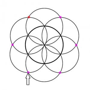 Cómo dibujar la Flor de la Vida